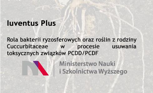 Projekt Iuventus Plus 2015-2018