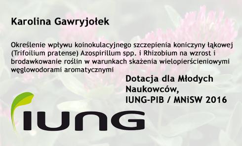 Dotacja dla Młodych Naukowców 2016 – Karolina Gawryjołek