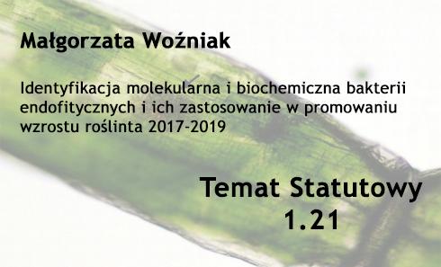 Temat statutowy 1.21 – Małgorzata Woźniak